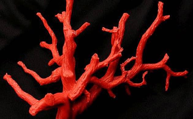 Arte trapanese del corallo - corallo di trapani